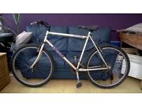 Univega Moutqin Bike