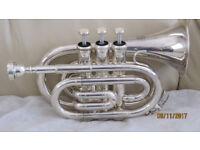 Mini Trumpet in silver plate finish.