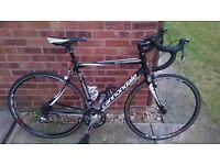 2013 Cannondale Synapse Road Bike 54cm - Excellent condition