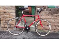"""BRITISH EAGLE RIDGE HYBRID CYCLE - 22"""" frame"""