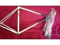 Vintage Raleigh bike frame, road, fixie, single speed, project, restoration.