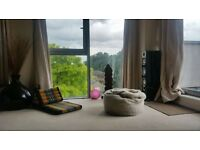1 bedroom in Hermit Road, London, Greater London, E16