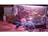 Aquarium kit/ fish tank and accessories
