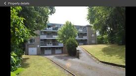 Double room in luxurious 2 bed flat share