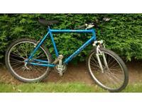 Raleigh cyclone men's mountain bike