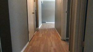 Newly renovated 1BD for $896 plus Free telus internet!!! Edmonton Edmonton Area image 4