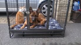 STRONG LARGE DOG CAGE, FABRICATED TO FIT REAR OF BERLINGO/PARTNER, WOULD FIT OTHER ESTATE VEHICLES.