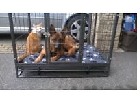 STRONG LARGE DOG CAGE, TO FIT REAR OF BERLINGO/PARTNER MK2 WOULD FIT OTHER ESTATE VEHICLES.