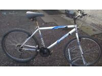 GENTS ADULT MOUNTAIN BIKE 20 IN FRAME 26 IN ALLOY WHEELS good condition