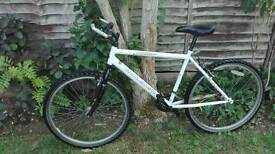 Raleigh Max 26'
