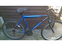 MENS MOUNTAIN BIKE £10