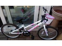 """Girls 18"""" Apollo mountain bike"""
