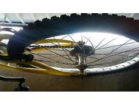 Concept Mountain Bike (teenager)