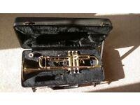 Ideal Beginners Trumpet