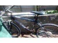 Montane bike