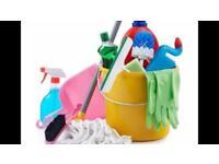 Reliable trustworthy honest cleaner