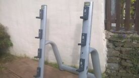 Technogym barbell rack