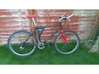 Saracen Sahara elite bike