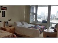 Huge double room in 2-bedroom flat beside the river