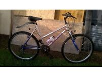NICE LADIES RALEIGH ACTIVATOR BIKE