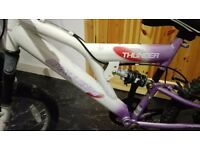 Kids bicycle 20 inch wheels