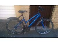 """Women's Apollo Bicycle 17"""" frame"""