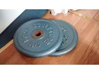 Body sculture weight 2x7.5kg cast iron weight plates
