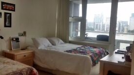 Huge double room in 2-bedroom flat with balcony facing the river