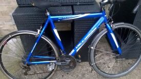 Racing Bicycle for sale blue Vittesse 21 speed Shimano REVO shift gears