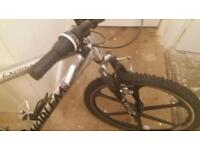 Prestigious 21 gear mountain bike