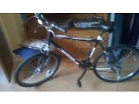 integra shadow all terain mountain bike