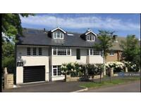 6 bedroom house in Sandygate Park Road, Sheffield, S10 (6 bed)