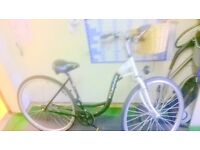 LOW LOOP CRUISER NEW PARTS FULLY RESTORED
