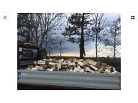 Seasoned firewood logs / timber - South Wales area