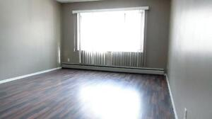 Newly renovated 1BD for $896 plus Free telus internet!!! Edmonton Edmonton Area image 6