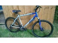 Apollo xc26 alloy mens mountain bike