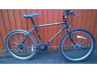 Raleigh Outland..Mans Mountain Bike. A reliable ride for only £45.00. Good bikes Located in Bridgend