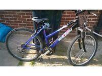 Raleigh mountain bike wanted