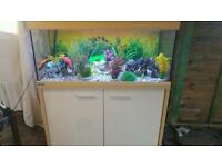 3.4FT EHEIM SIBILINE 180 LITRE FISHTANK WITH CABINET IN GOOD CONDITION
