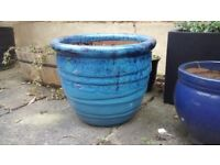 ** CERAMIC PLANT POTS: range of sizes and colours. £10 for large, £6 for small **