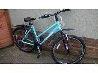 """Ladies Trek Skye 19.5"""" / 49.5 cm Hybrid Bicycle"""