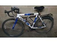 Barracuda Team Replica Road Bike
