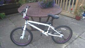 Bmx Stunt Bike (x-rated)