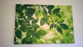 Leaves - wall print