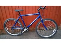 Raleigh Mountain Bike....Ready to Ride Away at a bargain price £47.00..One of many Great Value Bikes