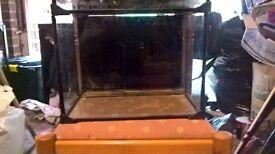 love fish tank x2