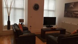 One Bedroom Apartment. BELFAST (Ideal for long distance commuter)