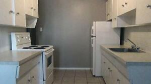 Newly renovated 1BD for $896 plus Free telus internet!!! Edmonton Edmonton Area image 2