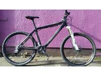 Custom made Specialized Stumpjumper Expert carbon fibre mountain bike