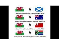 Welsh rugby autumn international tickets